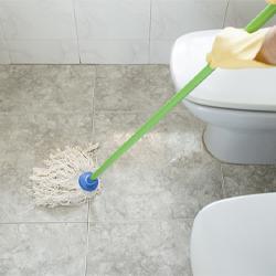 ผลิตภัณฑ์ทำความสะอาดห้องน้ำ